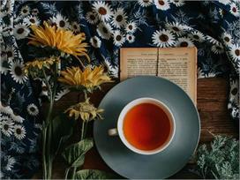 दुनिया की 5 सबसे महंगी चाय, पीने से बीमारियां रहेंगी कोसों...