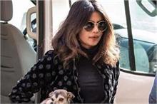प्रियंका ने अपने डॉगी के लिए बनवाई स्पेशल जैकेट, कीमत कर...