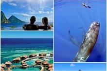 मालदीव और बाली नहीं, हनीमून के लिए बेस्ट हैं ये 5 Visa-Free...