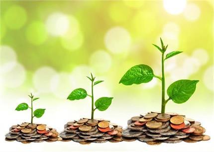Vastu Tips : घर में पैसे और बरकत की कमी नहीं आने देते ये 8 पौधे