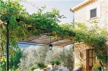 Kitchen Gardening: बगीचे को रखना चाहते है हरा-भरा तो फॉलो...