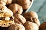 रोजाना 2 भीगे बादाम खाने से मिलेंगे 8 बेहतरीन फायदे, Fat घटाने में भी...