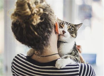 बिल्ली भी रखेगी सेहत का ख्याल, घर के अंदर रखने से मिलेगा फायदा