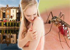 World Maleria Day: मच्छरों को घर से दूर रखेंगी किचन की ये 7...