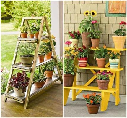Summer Tips: 7 पौधे लगाकर घर को रखें ठंडा और फ्रैश