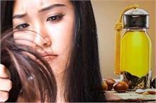 Hair Care: बालों से जुड़ी हर छोटी-बड़ी समस्या का हल है ये...
