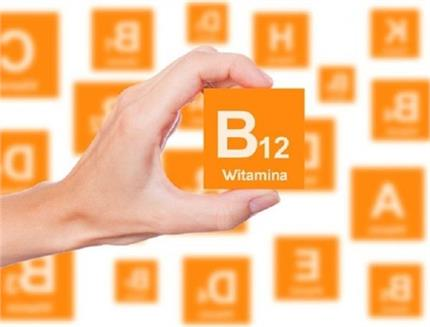 किन लोगों को होती हैं विटामिन B12 की कमी? जरूर खाएं ये 10 आहार