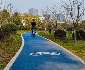 दुबई में बन रही हैं नीले रंग की सड़के, वजह है बड़ी...