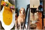 इंस्टाग्राम पर छाई है ये 10 कैफे की तस्वीरें(See Pics)