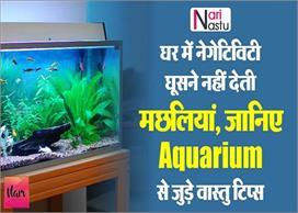 घर में नेगेटिविटी घूसने नहीं देती मछलियां, जानिए Aquarium...