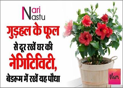बरकत और तरक्की के लिए घर में रखें यह पौधा, जानिए औरतों के लिए शुभ...