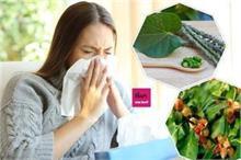 Health Advice: कोरोना काल में अमृत समान ये 4 औषधियां, खा...