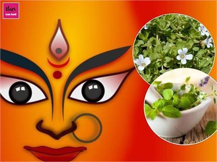 नवरात्रि और आयुर्वेद में गहरा संबंध, मां दुर्गा का स्वरूप है ये 9...