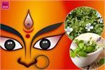 नवरात्रि का आयुर्वेद में गहरा संबंध, मां दुर्गा का स्वरूप है ये 9...