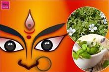 नवरात्रि का आयुर्वेद में गहरा संबंध, मां दुर्गा का स्वरूप...