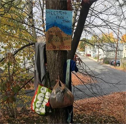 मिलिए एक ऐसे पेड़ से जो जरूरतमंदों की कर रहा मदद!