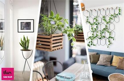 Decor Ideas: छोटे-छोटे आइडियाज से घर को दें नेचुरल लुक