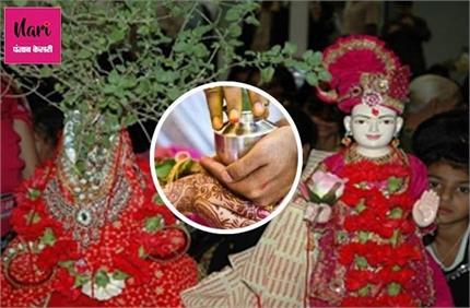 तुलसी विवाह के दिन हल्दी से करें यह उपाय, मिलेगा मनचाहा साथी