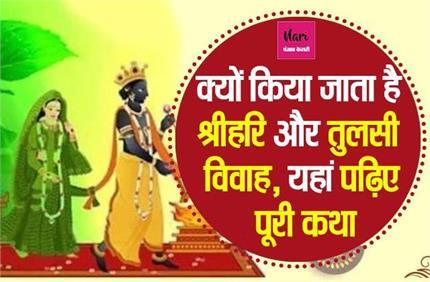 Tulsi Vivah 2020: क्यों किया जाता है भगवान विष्णु का तुलसी संग विवाह?...