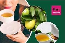 कई बीमारियों का रामबाण इलाज है अमरूद के पत्तों से बनी 1 कप...