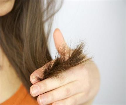 घर बैठे पाएं दो मुंहे बालों से छुटकारा, कुछ ही दिनों में दिखेगा रिजल्ट
