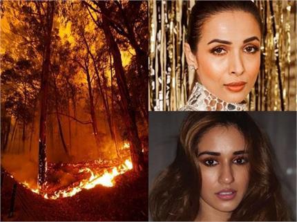 ऑस्ट्रेलिया में लगी आग पर बी-टाउन सेलेब्स ने जताया दुख, शेयर की पोस्ट