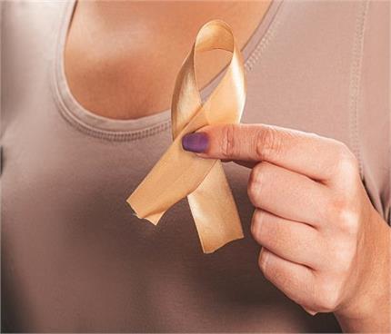 कैंसर से बचना है तो जरूर करें इन 5 हर्ब्स का सेवन