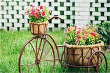 घर में पड़ा पुराना साइकिल गार्डन को देगा परफेक्ट लुक (See...