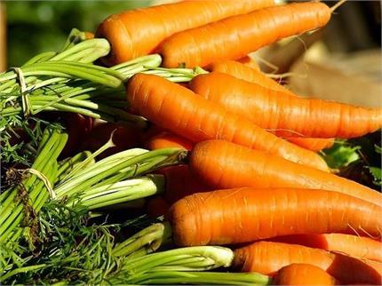 गाजर का जूस पीने से कैंसर का खतरा होगा कम! औरतों के लिए और भी फायदेमंद