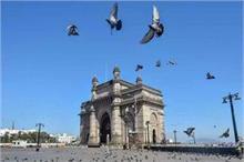 लॉकडाउनः घर में हैं बंद लेकिन ना भूलें पक्षियों को दाना...