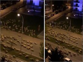 लॉकडाउन इफैक्टः तुर्की के सुनसान सड़कों पर भेड़ों का कब्जा...