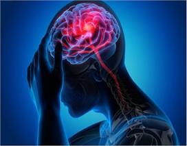 World Brain Tumor Day: जानें ब्रेन ट्यूमर होने के लक्षण,...