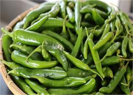 बढ़े हुए वजन को हरी मिर्च से करें कम