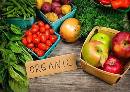 भारत में बढ़ रही Organic Foods की डिमांड, जानिए 10 बेहतरीन आहार