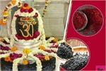 सावन में करें ये उपाय बनी रहेंगी भगवान शिव की कृपा