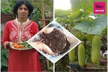 Amazing: बिना मिट्टी 10 सालों से फल-सब्जी उगा रहीं पुणे की...