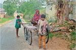 आज के श्रवण कुमार, बेटों ने बीमार मां को ठेले पर बैठाकर पहुंचाया...