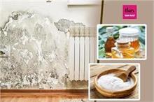 मानसून टिप्सः दीवारों पर पड़ी सीलन हटाने के बेस्ट तरीके