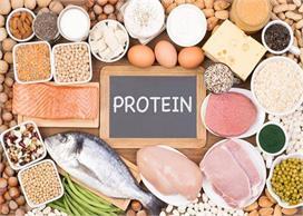प्रोटीन का पावरहाउस हैं ये 7 आहार, एक दिन में कितनी मात्रा...