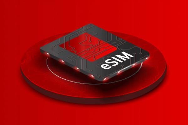 Vodafone Idea ने भारत में लॉन्च की e-SIM सर्विस, सबसे पहले iPhone यूजर्स को मिली सपोर्ट