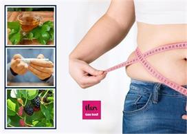 शुगर, मोटापे का रामबाण इलाज, शहतूत की पत्तियों की चाय