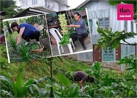 नागालैंड के लिए वरदान बना लॉकडाउन, घर पर सब्जियां उगा कर...