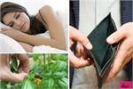 शाम के समय करेंगे ये 6 काम तो घर में रहेगी सिर्फ गरीबी