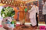 पीएम मोदी ने अयोध्या में लगाया हरसिंगार का पौधा, जानिए इसके लाजवाब...