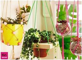 DIY Ideas: घर पर क्रिएटिविटी दिखाकर बनाएं Innovative Planter