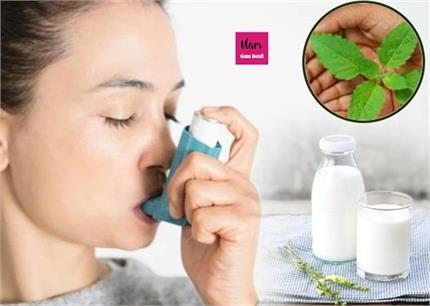 किडनी स्टोर या माइग्रेन, 6 रोगों का पक्का इलाज तुलसी वाला दूध