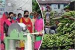 कचरे से इनोवेशन! केले के तने से बनाया कपड़ा, महिलाओं को रोजगार दे...