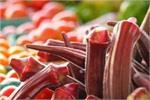 हरी की जगह अब खाएं लाल भिंडी, दिल की बीमारी से बचाने समेत जानिए 5 बड़े...