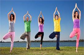 Arthritis Day: अर्थराइटिस प्रॉब्लम में आराम दिलाएंगे ये...