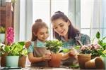 Kitchen Garden: बढ़ेगी घर की खूबसूरती और सेहत को मिलेंगे कई फायदे